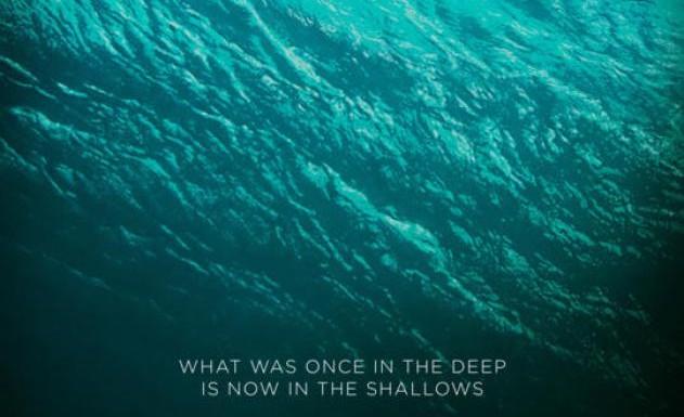 [TRAILER]: The Shallows – und ein paar andere Filme