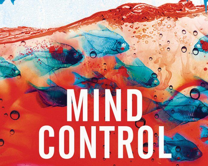 Ausschnitt: Cover Heyne: Stephen King: Mind Control