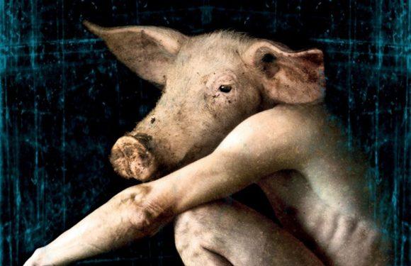 [REZENSION]: Edward Lee: Das Schwein