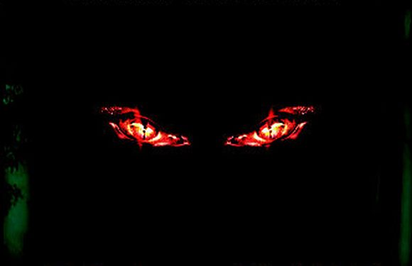 [REZENSION]: Shane Mulligan: Mayhem