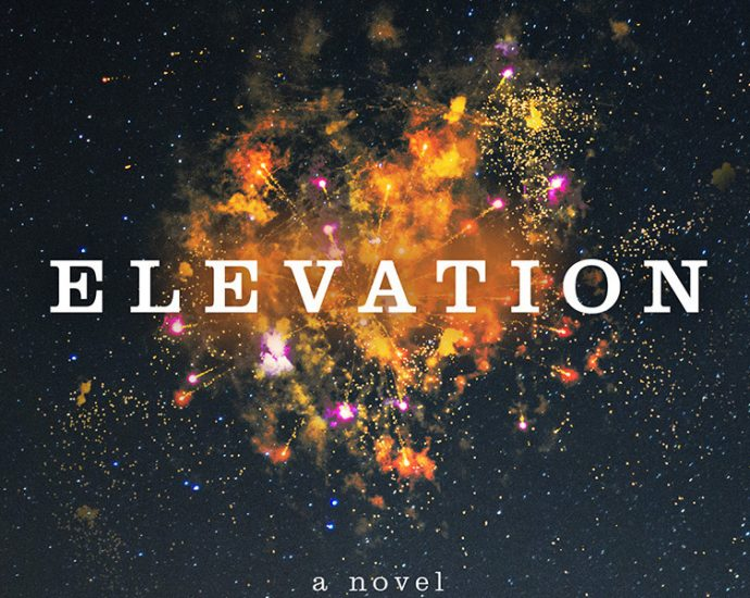 Ausschnitt Cover: Stephen King: Elevation